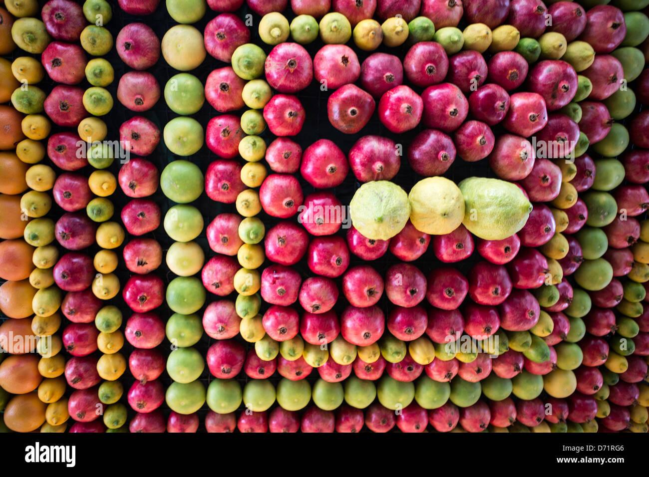 Sukkot festive celebration of the Samaritan religious community - Stock Image