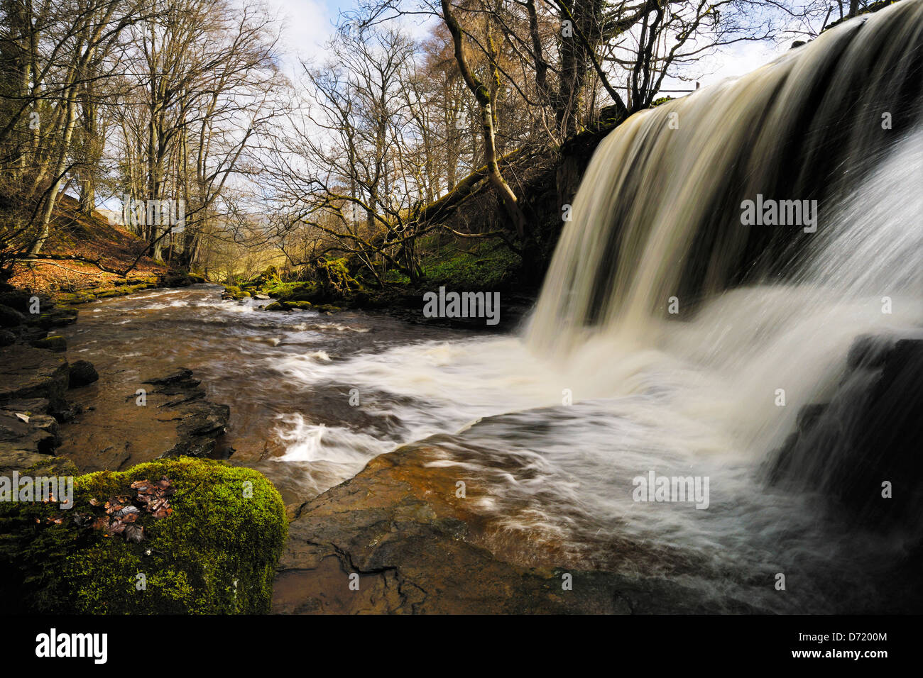 Plunging, splashing, fast flowing water in Haverdale Woods, Swaledale, Yorkshire, England - Stock Image