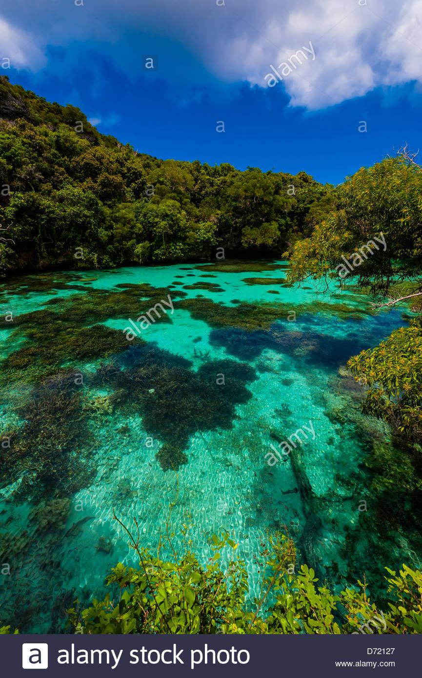 Natural Aquarium, Island of Mare, Loyalty Islands, New Caledonia - Stock Image