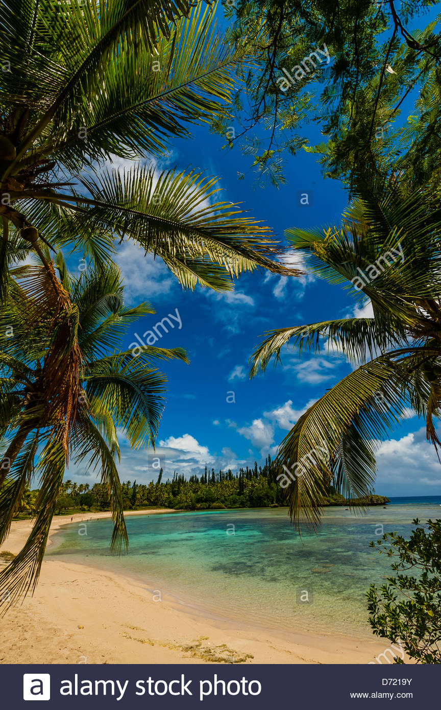 Beach at Mebuet, island of Mare, Loyalty Islands, New Caledonia - Stock Image