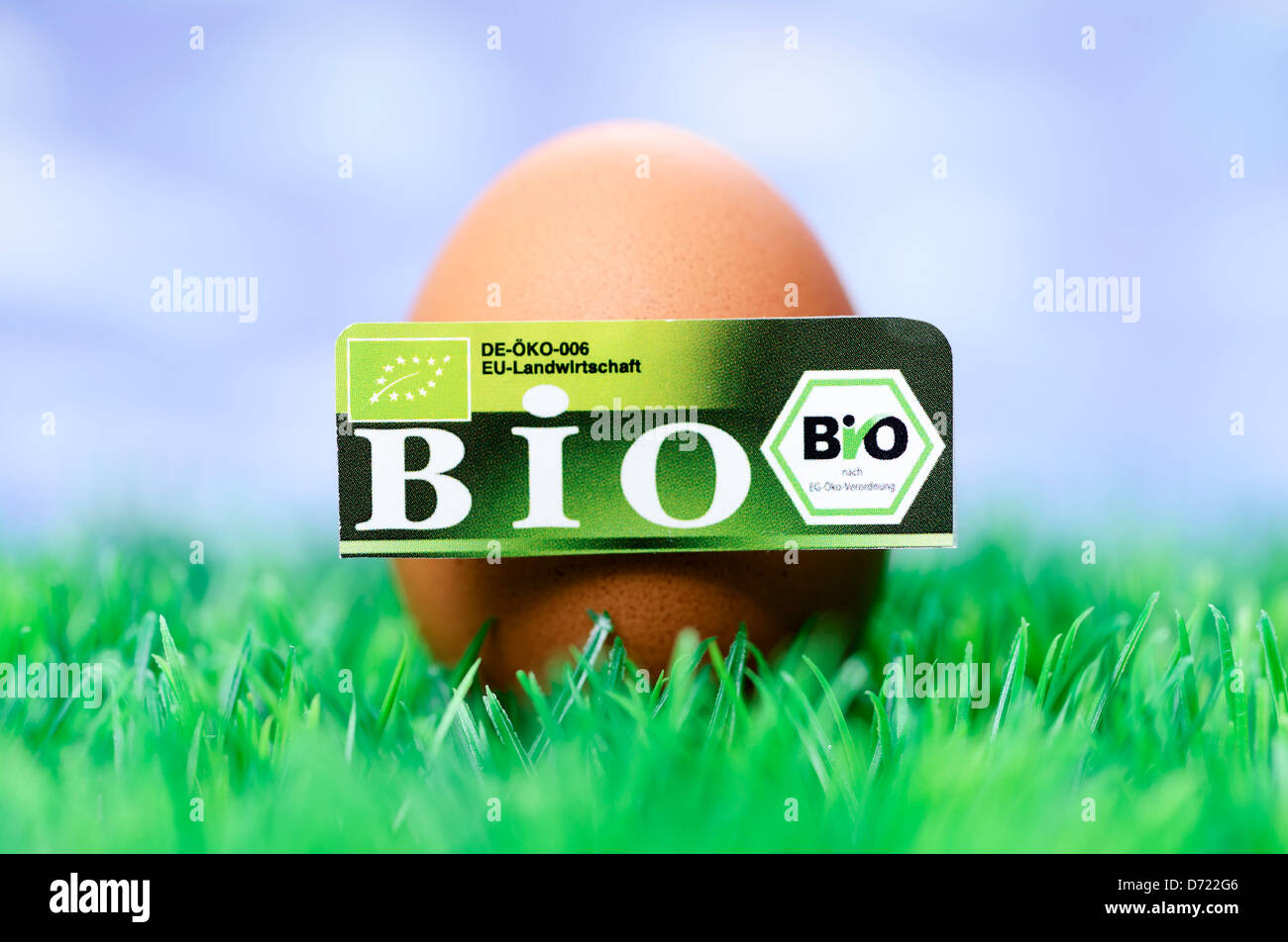 Egg with bio-seal, symbolic photo wrong declared biology eggs Stock Photo