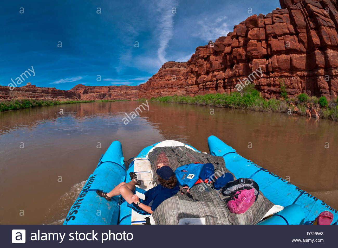A Wilderness River Adventures motorized pontoon rafting down the Meander Canyon section of the Colorado River, Utah, - Stock Image