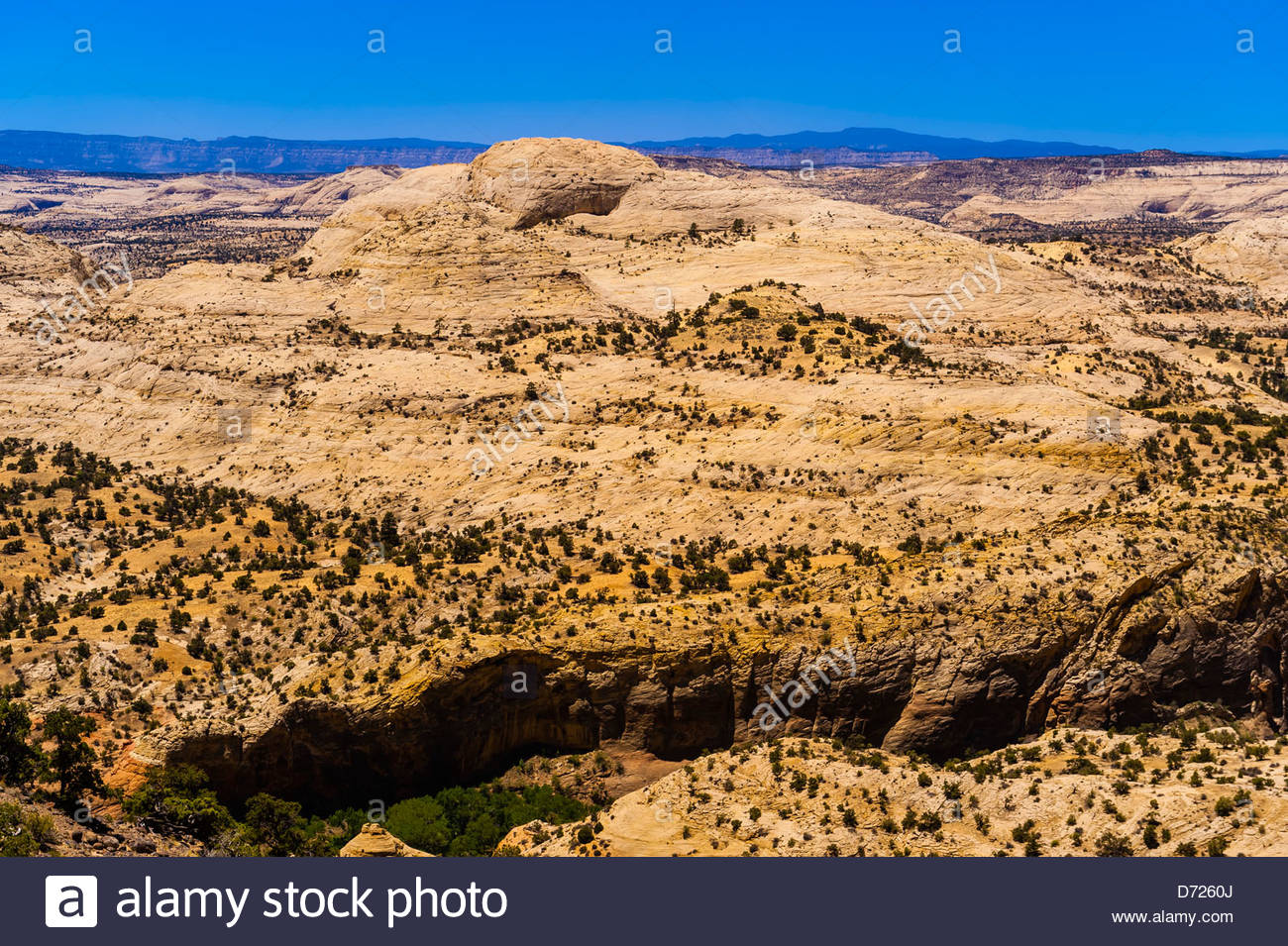 Grand Staircase-Escalante National Monument, near Boulder, Utah USA Stock Photo