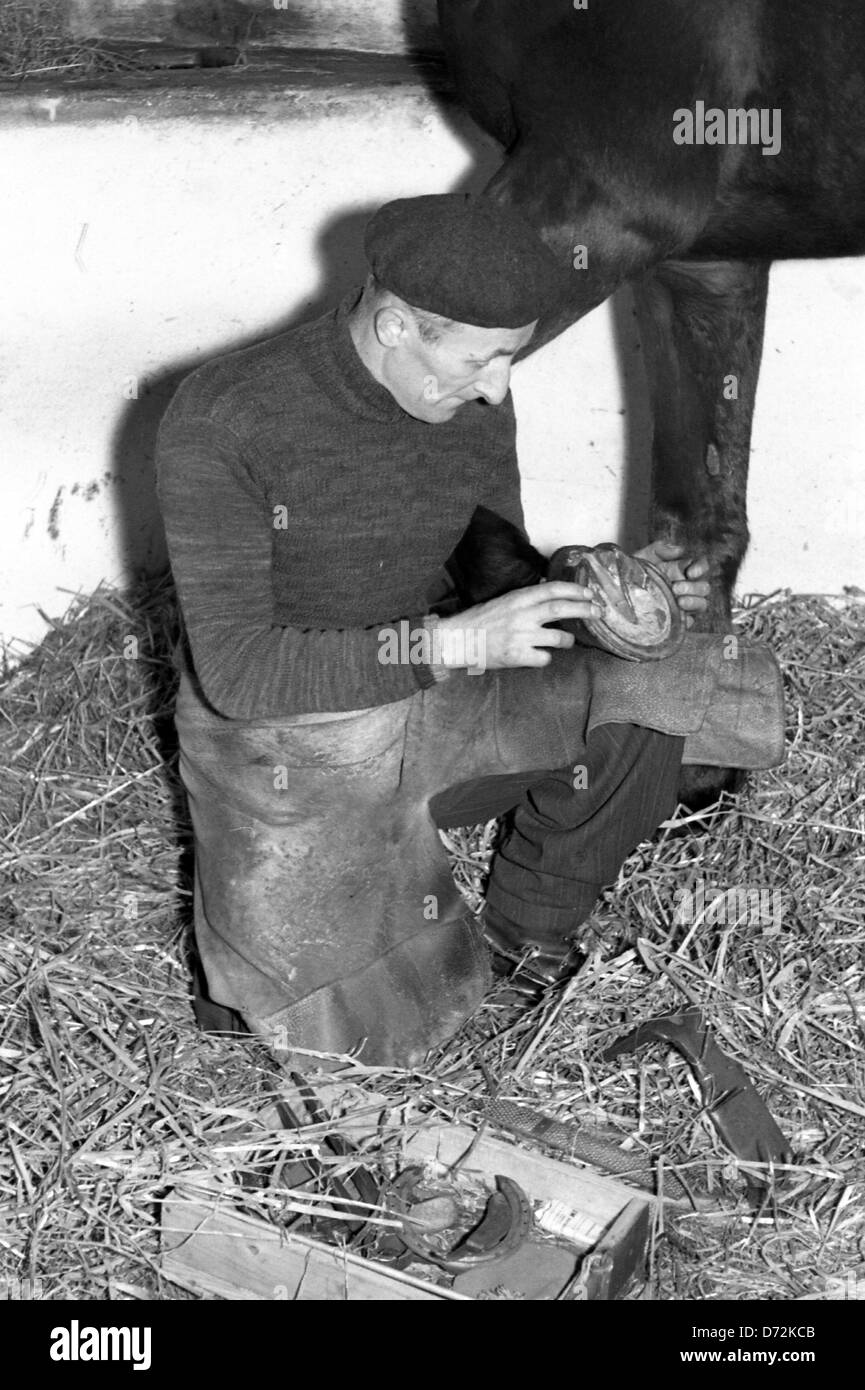 Dresden, East Germany, farrier fits a new horseshoe - Stock Image