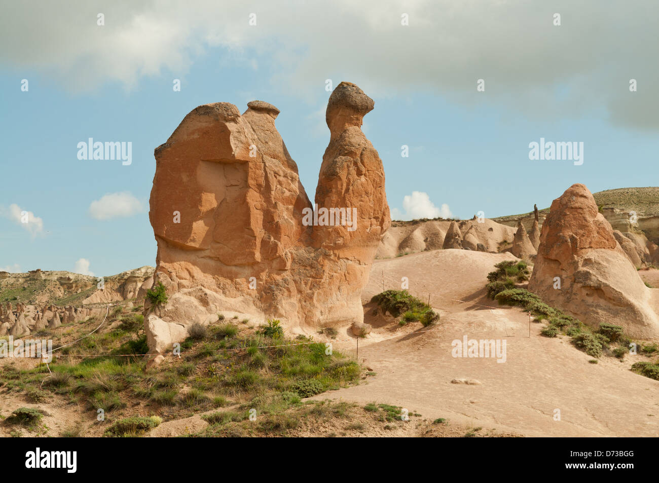 The Camel, Fairy Chimneys at Pasabagi, Cappodocia, Nevsehir, Turkey - Stock Image