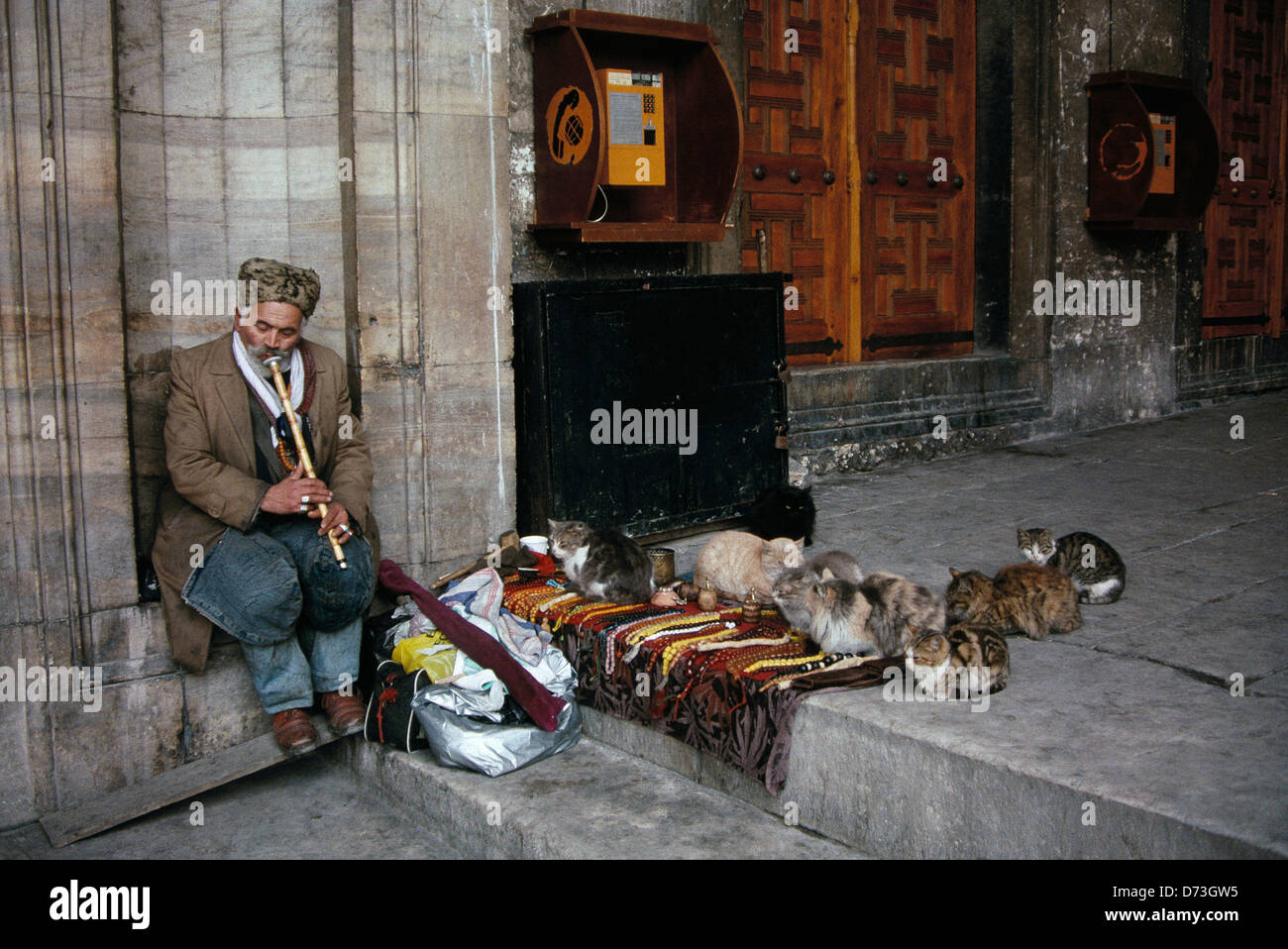 A piper serenades while a flock of cats gather outside the Yeni Cami or New Mosque in Istanbul. - Stock Image