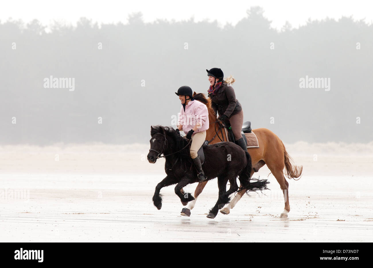 Girls riding two horses galloping on the beach, Holkham Beach, north Norfolk coast UK - Stock Image