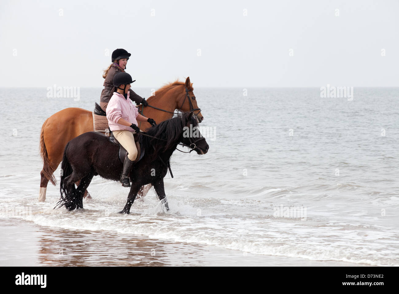 Two young women riding horses in the sea surf at the waters edge, Holkham Beach, Norfolk UK - Stock Image