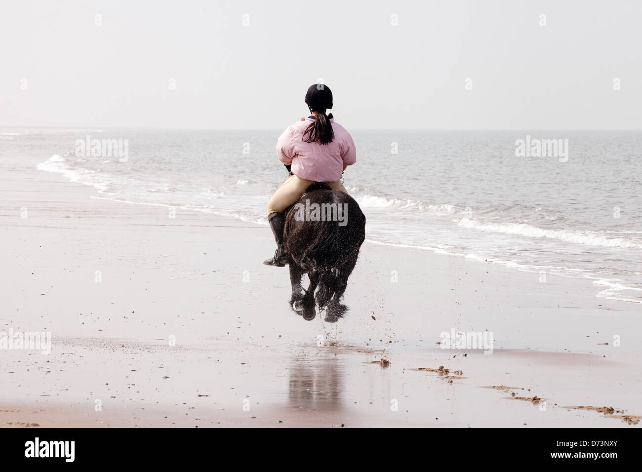 A young woman on her horse galloping away into the distance, Holkham Beach, Norfolk UK - Stock Image