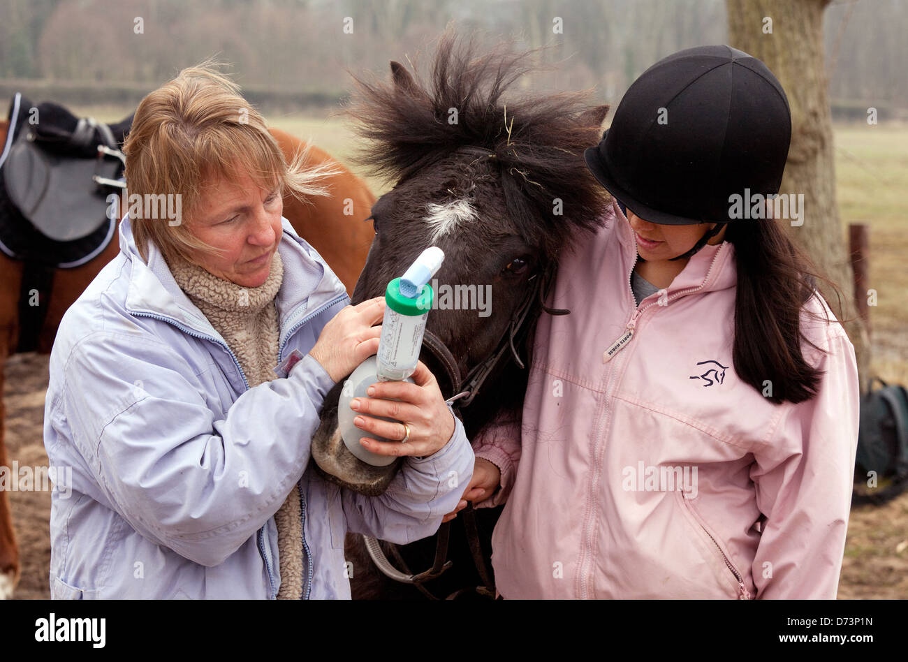 An owner giving her horse an asthma inhaler medication for treatment, UK - Stock Image