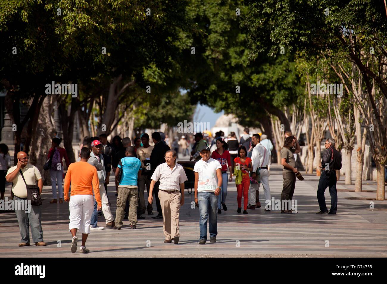 pedestrians walking on Paseo del Prado, Havana, Cuba, Caribbean - Stock Image