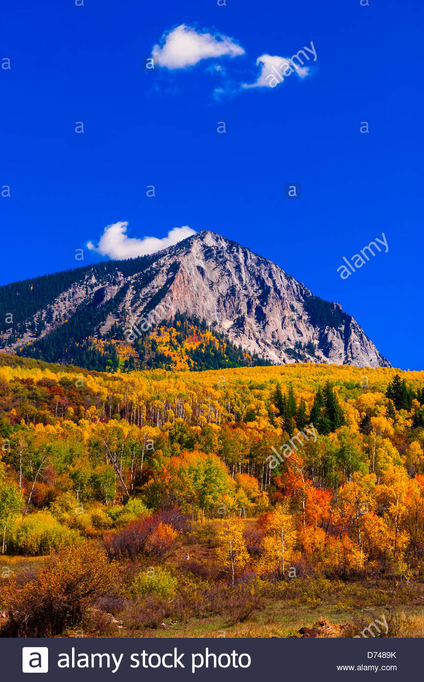 Fall color, Kebler Pass, near Crested Butte, Colorado USA. - Stock Image