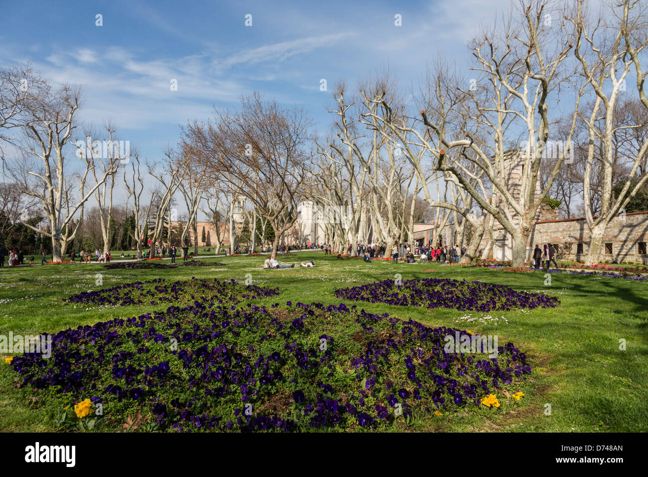 Garden in the first courtyard of Topkapi palace, Istanbul, Turkey. - Stock Image