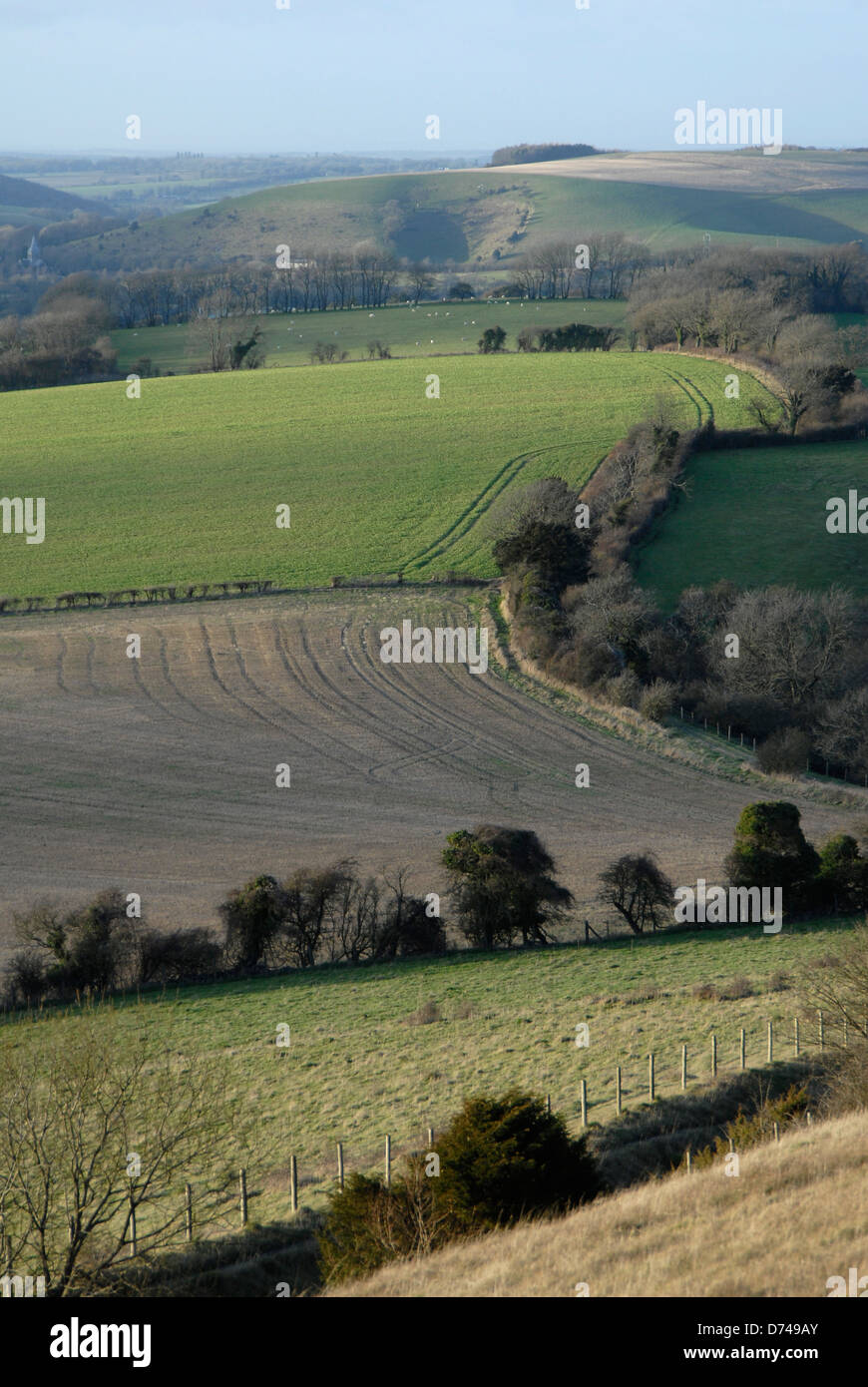 View looking North across fields towards East Meon, Hampshire, from Butser Hill - Stock Image
