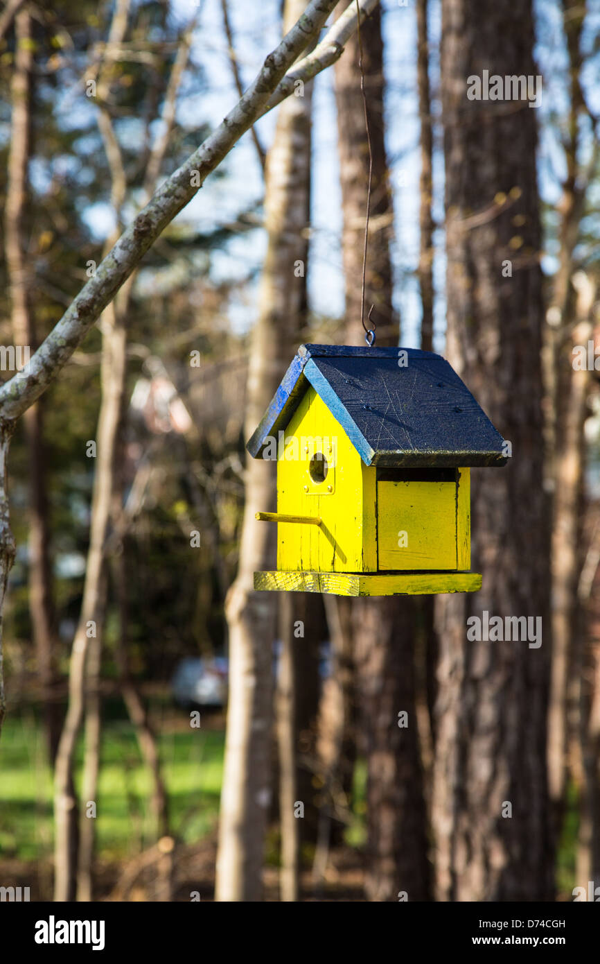 A colorful birdhouse in the branches of a tree in the first blooms of spring. - Stock Image