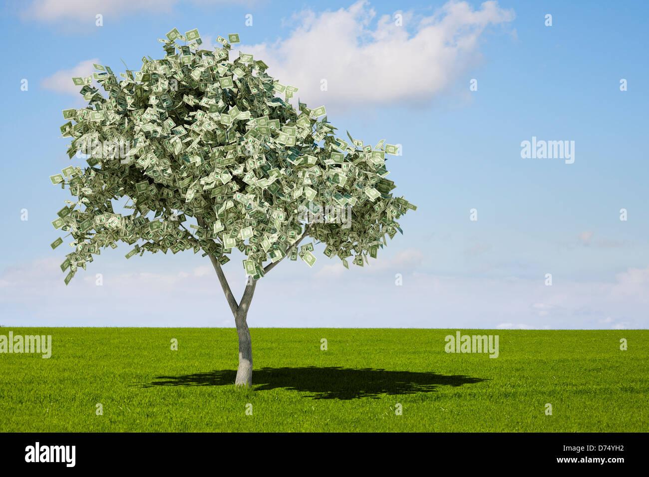 Dollar bills on a money tree - concept - Stock Image