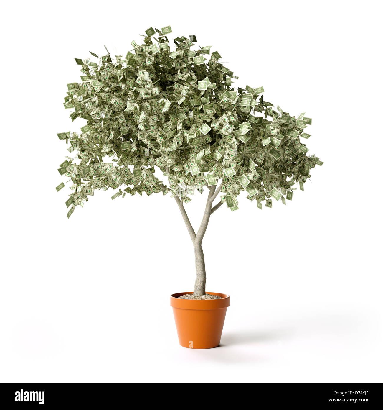 Dollar bills money tree - Stock Image