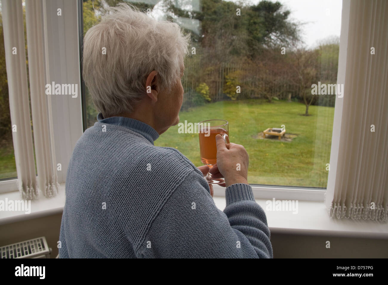 UK Elderly woman looking out of conservatory window drinking a hot drink on a cold and wet day decaffinated tea - Stock Image