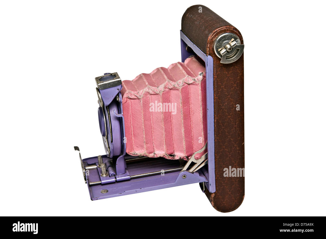 Side view of an antique pocket camera, purple with pink bellows. - Stock Image