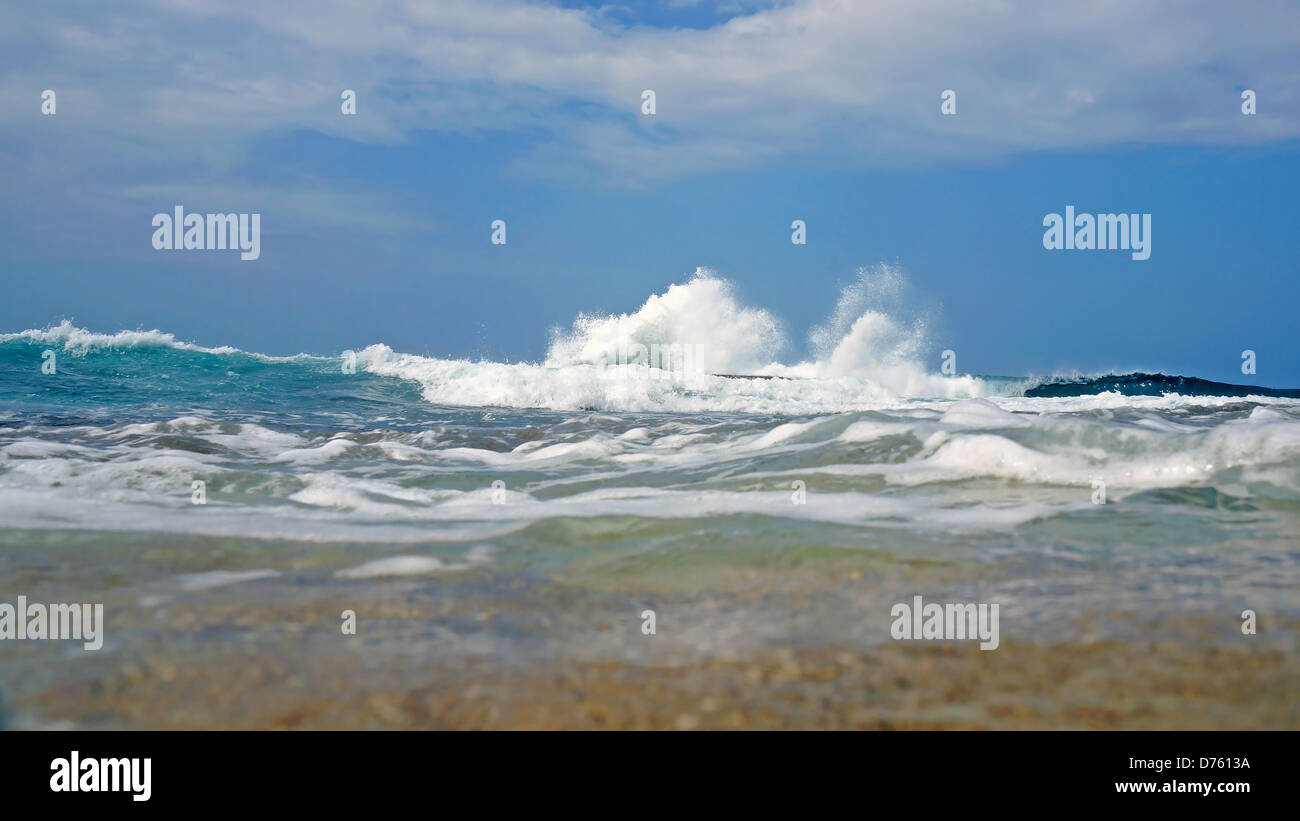 Wave crashing seen from water surface, Caribbean sea, Costa Rica - Stock Image