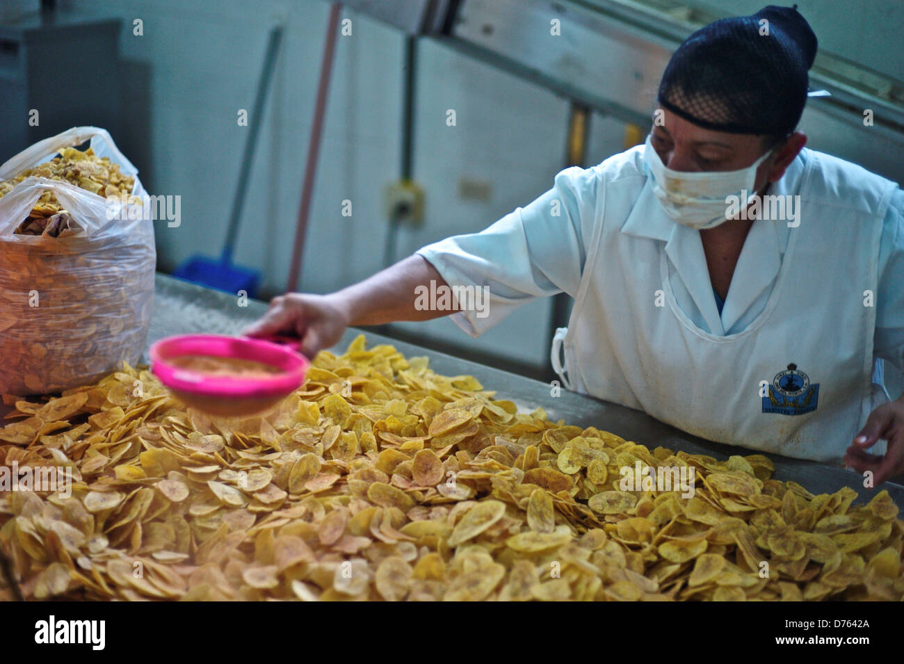 Panam Majazec, Frying plantains at agroindustrial family company - Stock Image