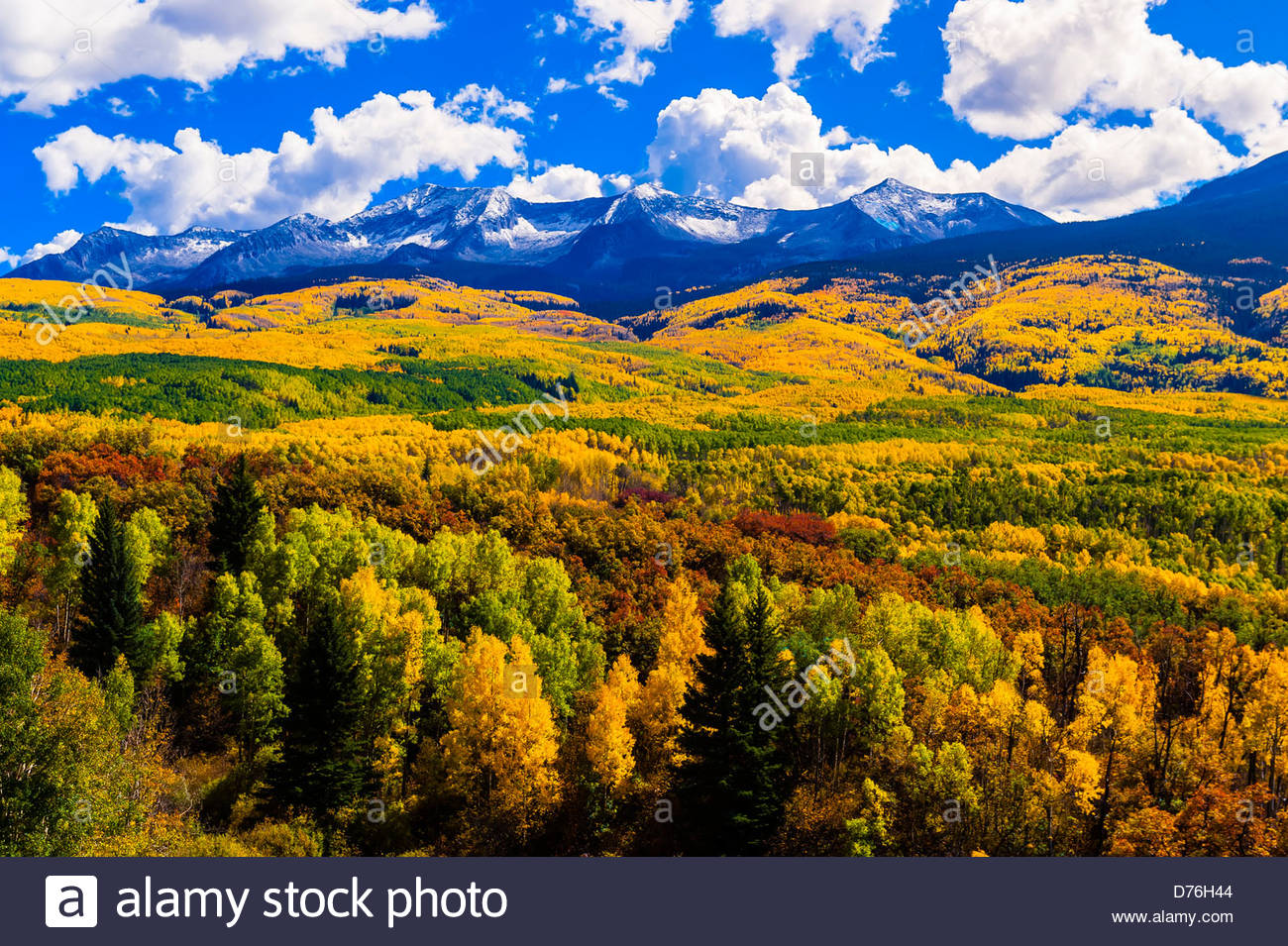 Scenic Highways Fall Color Kebler Pass Near Crested Butte Colorado Usa