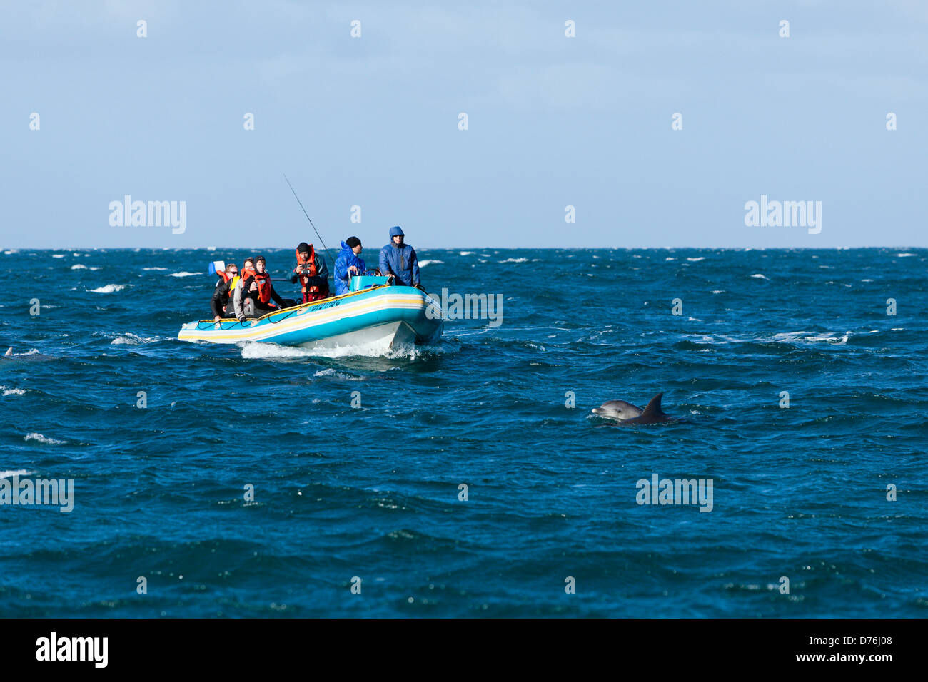 Tourists at Dolphin watching, Wild Coast, Eastern Cap, South Africa - Stock Image