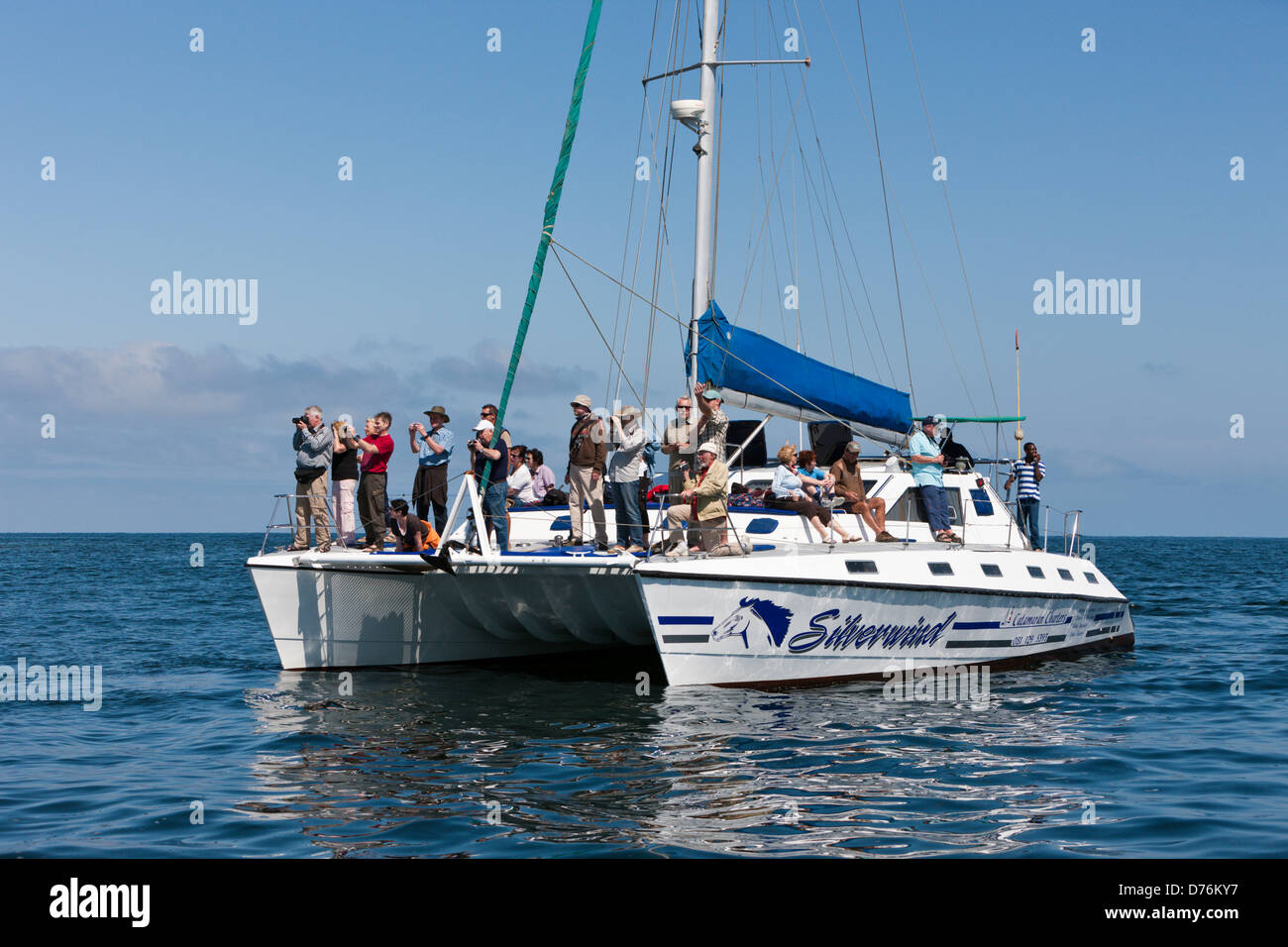 Tourists during Dolphin watching tour, Walvis Bay, Namibia - Stock Image