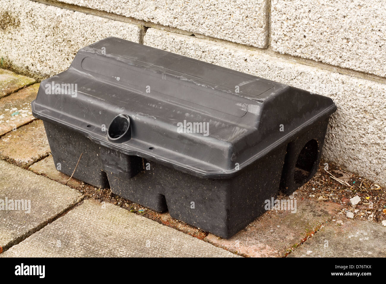 Rat trap for baiting rats without harming household pets - Stock Image