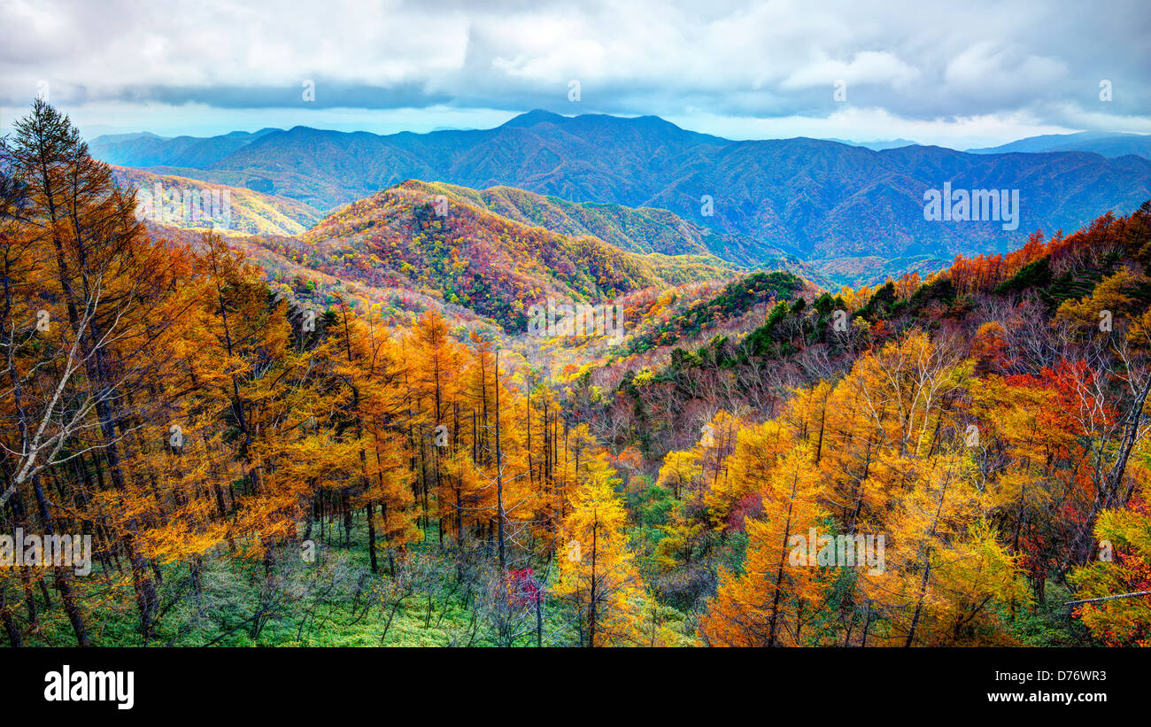 Mountain range in Nikko National Park in Nikko, Tochigi, Japan. - Stock Image