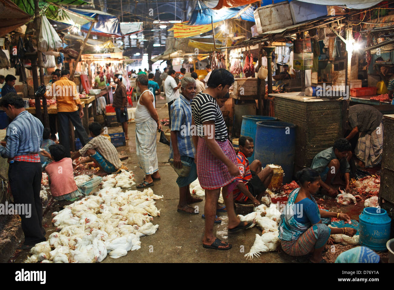 The meat section at New Market in Kolkata (Calcutta), India - Stock Image