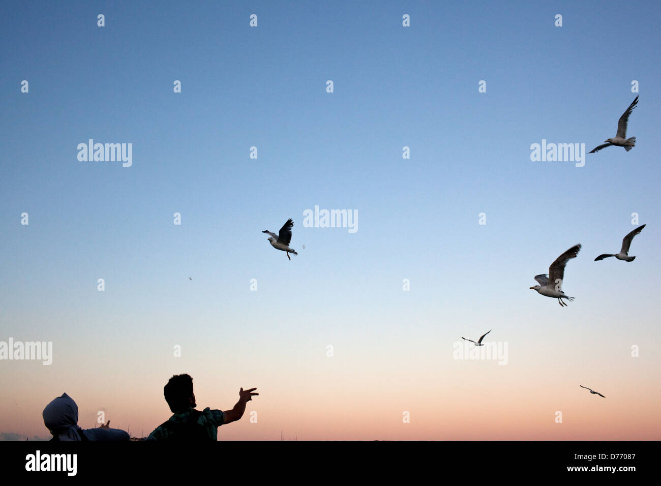 A Turkish couple feeding seagulls on a ferry ride from Kadikoy to Eminonu in Istanbul, Turkey. - Stock Image