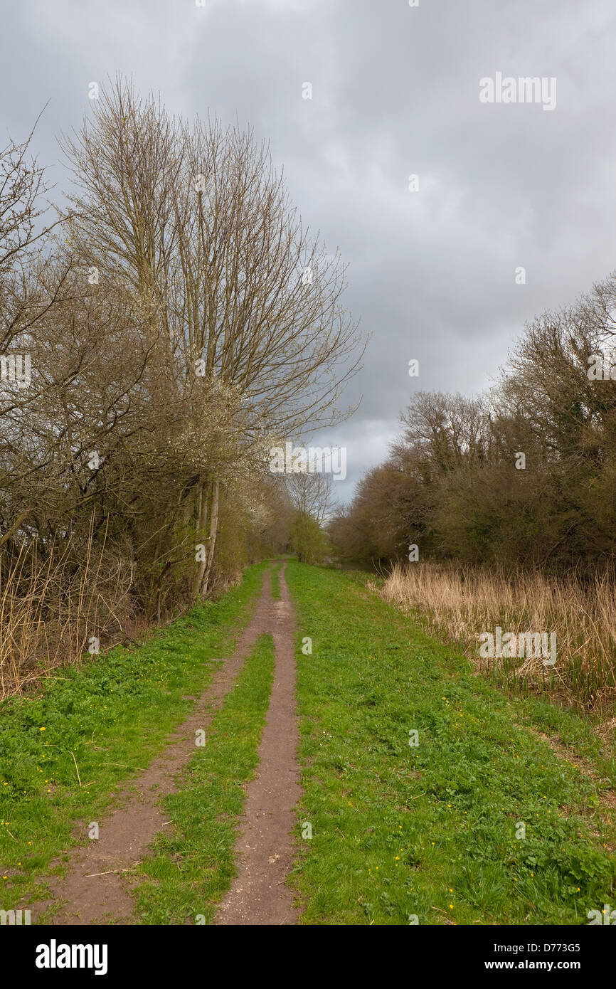 A canal towpath in springtime with trees and hedgerows and wild plum blossom under a dramatic cloudy sky - Stock Image