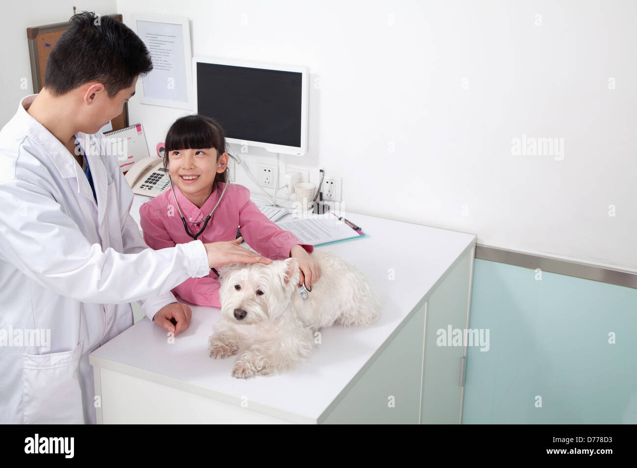Girl with pet dog in veterinarian's office - Stock Image