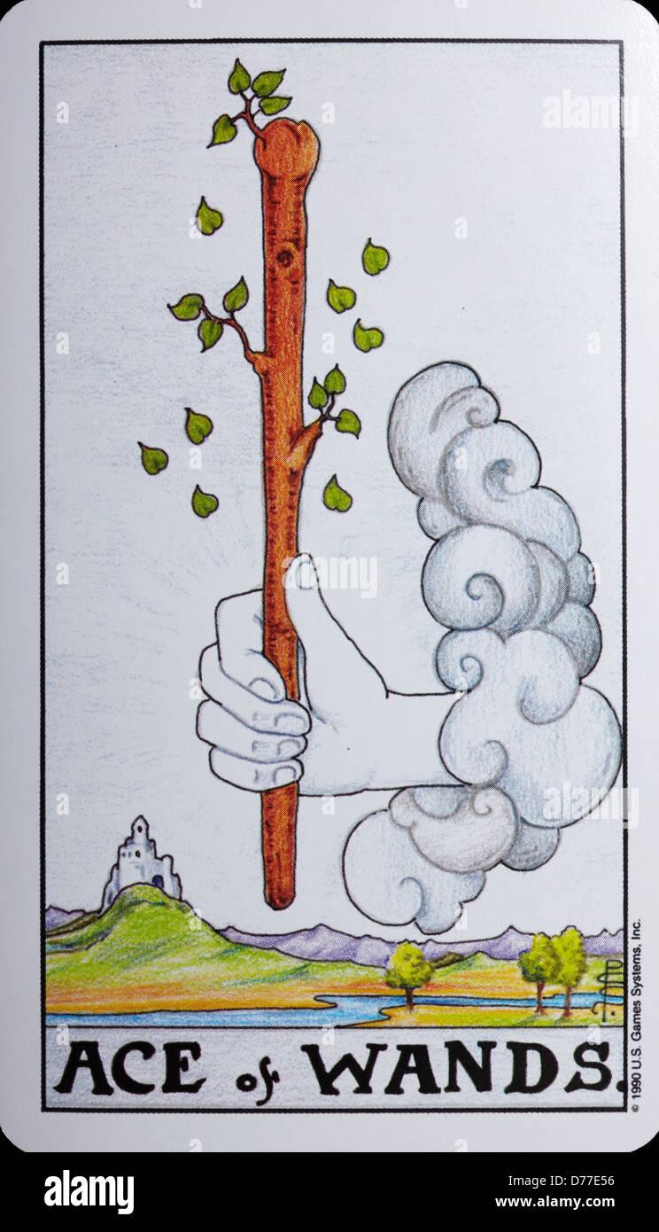 Tarot Card 'Ace of Wands' - Stock Image