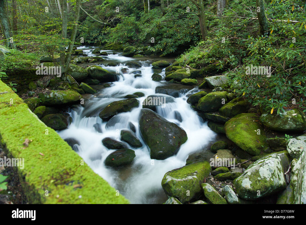 Rushing river along a road in the Great Smoky Mountain National Park. - Stock Image