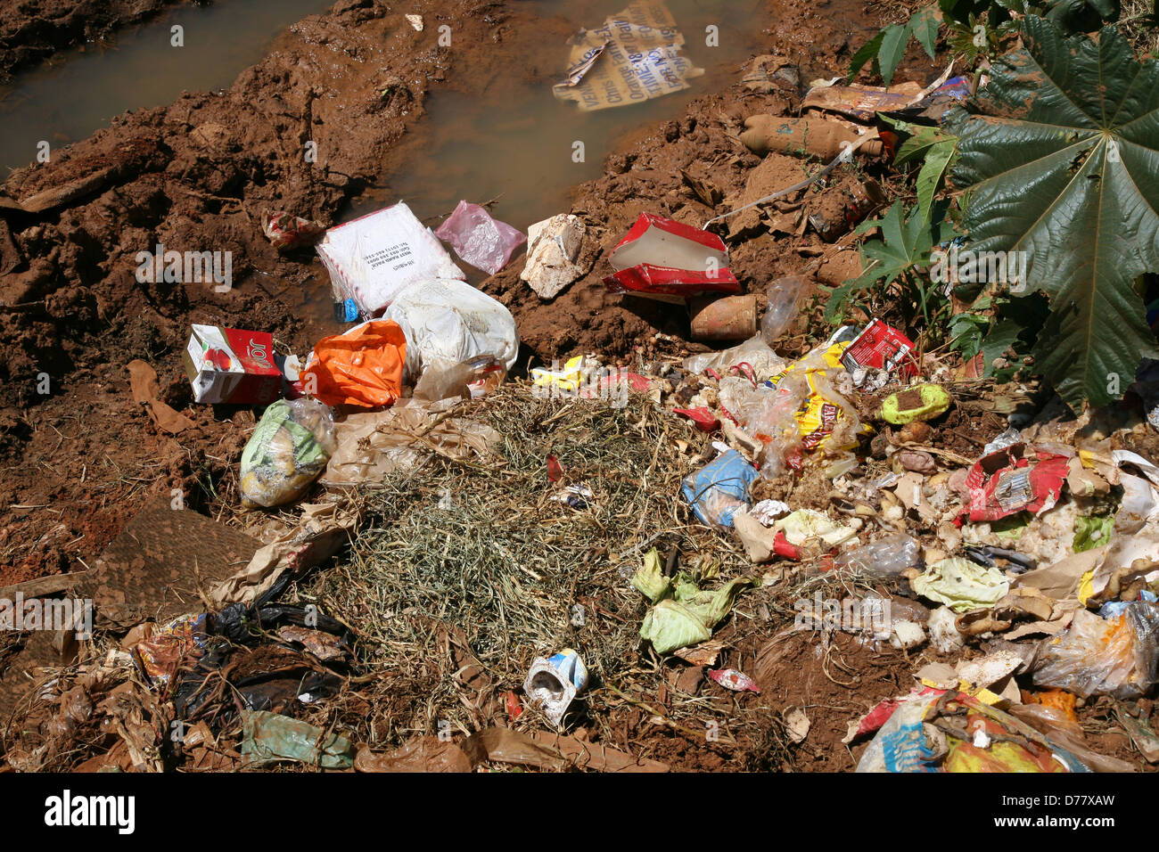 Garbage polluting ground water - Stock Image