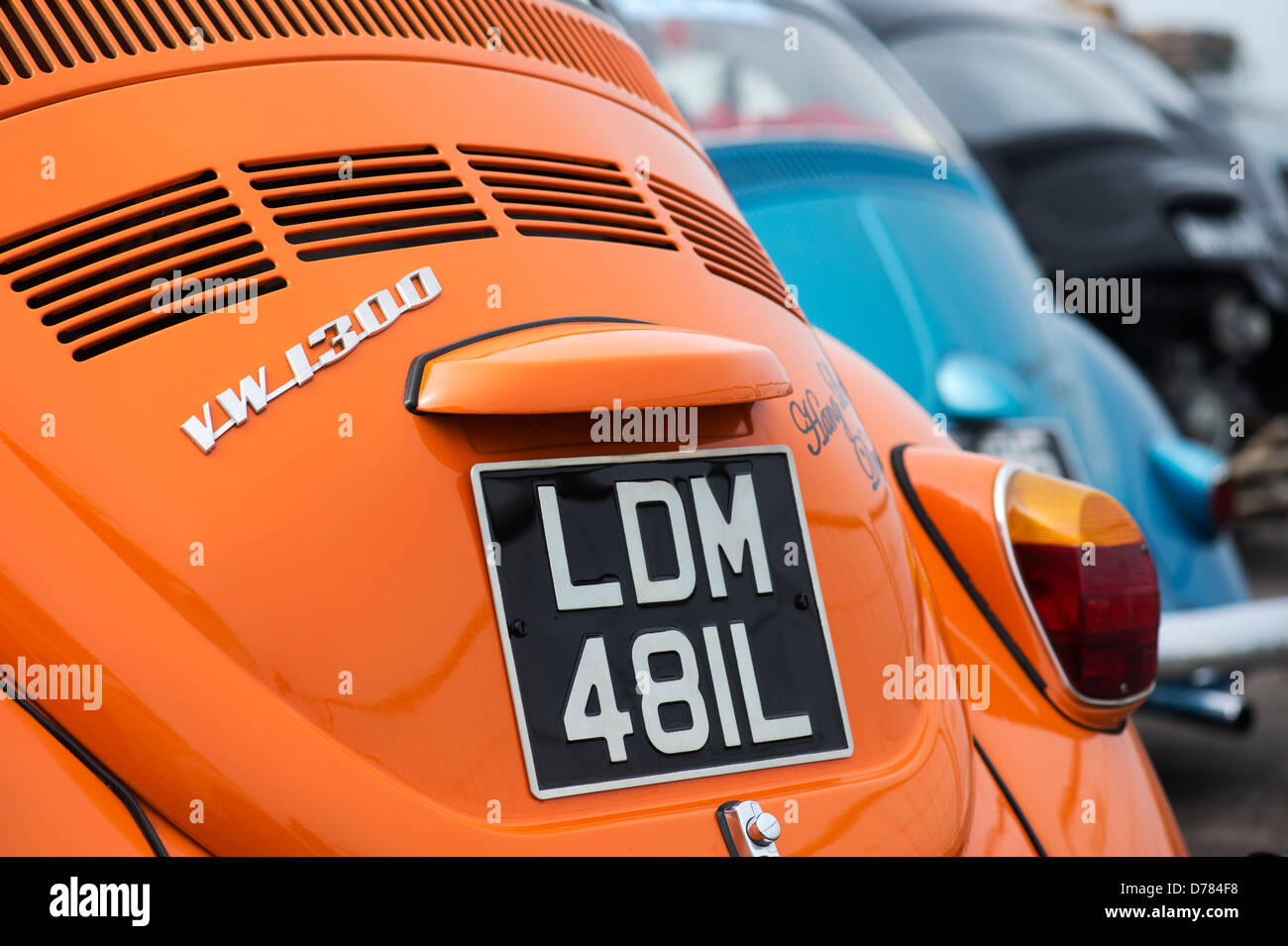 VW Beetle cars. Rear end - Stock Image