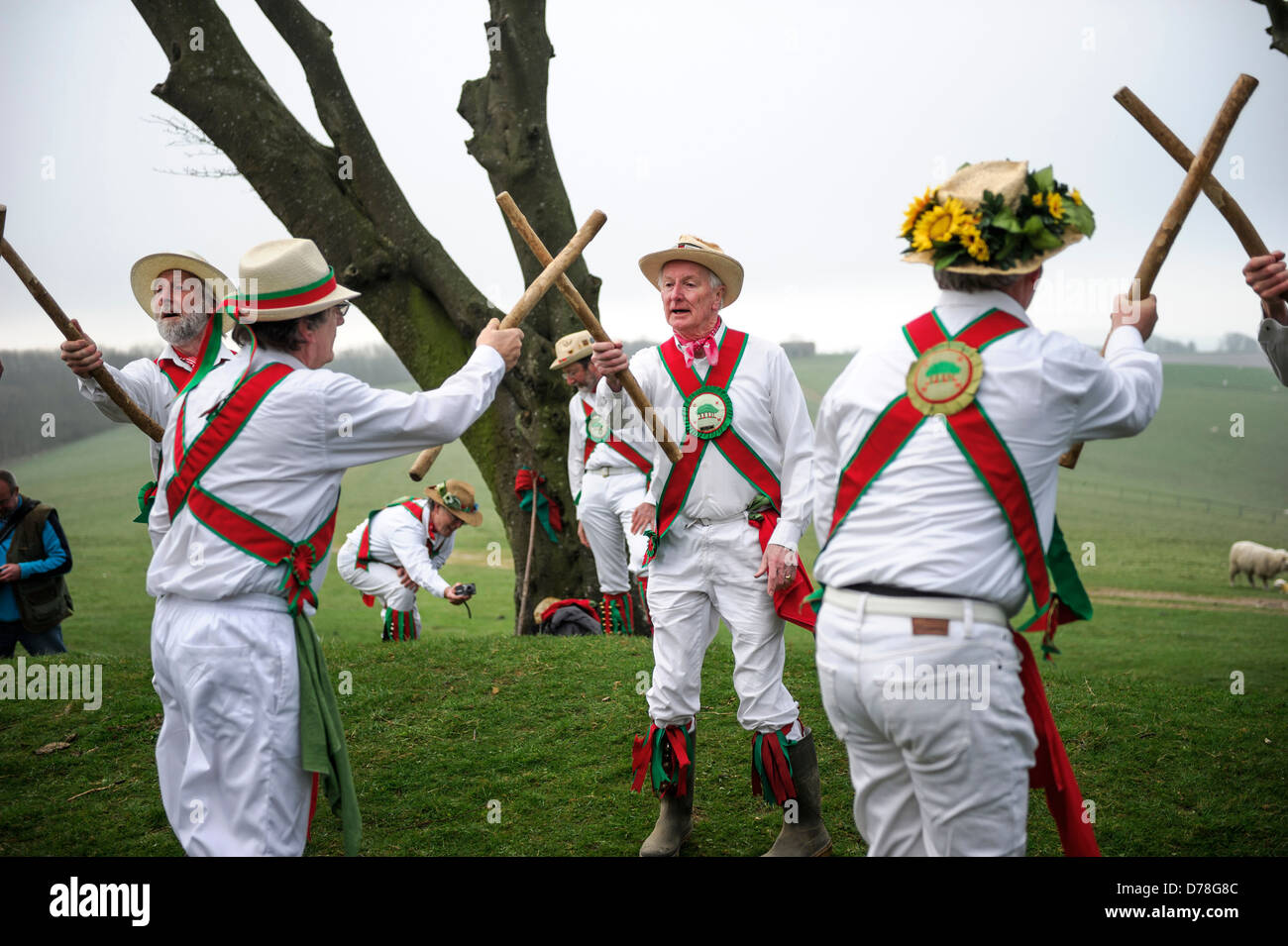 The Chanctonbury Ring Morris men welcome in Spring on May 1 2013 atop a cold Chanctonbury Hill on the Sussex South - Stock Image