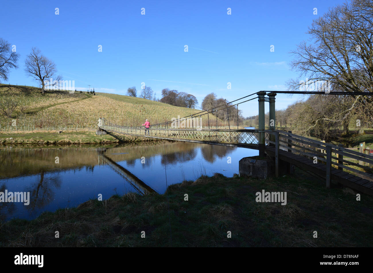 Woman Walking Across the Suspension Bridge over the River  Wharfe near Hebden on the Dales Way Long Distance Footpath Stock Photo