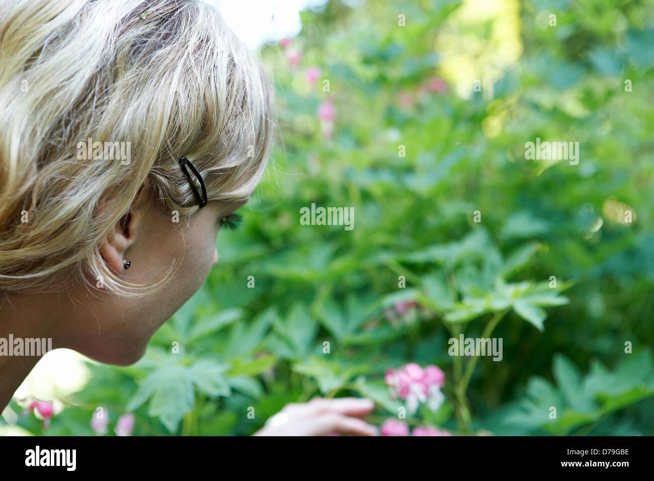 Woman picking bleeding heart flower in profile - Stock Image