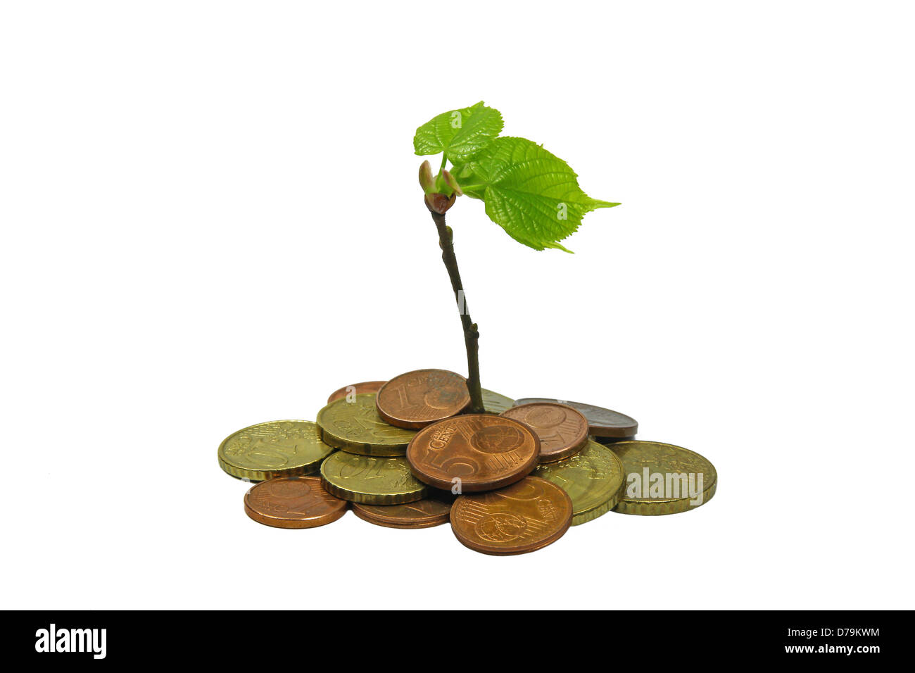 green plant growing from pile of coins - Stock Image