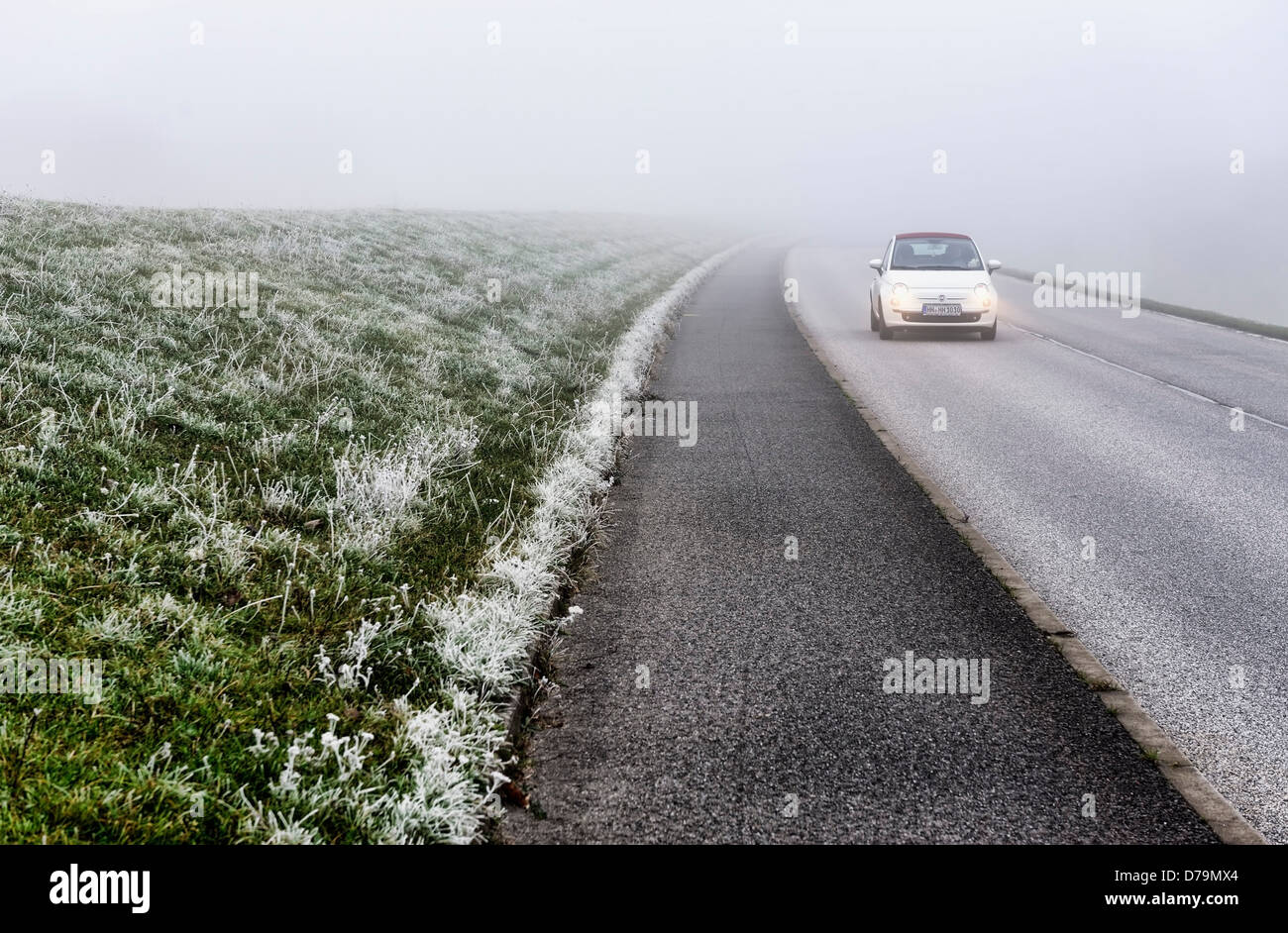 Misty Deichstrasse in Kirchwerder, 4 and marshy land, Hamburg, Germany, Europe (car registration changed) , Neblige - Stock Image
