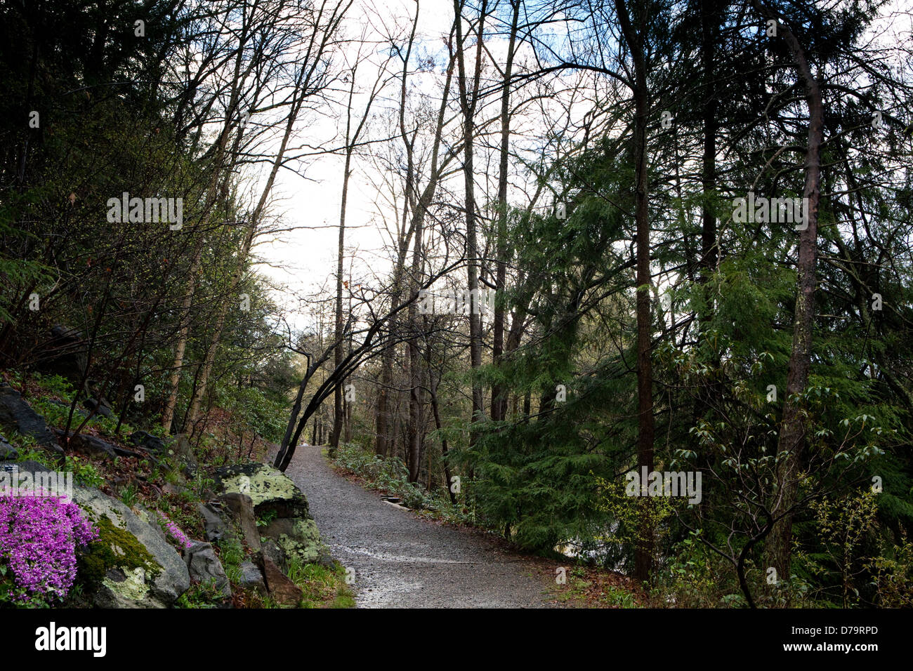 A view of a path in the Botanical Gardens in Asheville, North Carolina - Stock Image