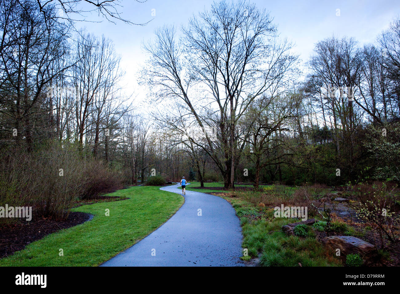 A view of Glenn's Creek Greenway in Asheville, North Carolina - Stock Image