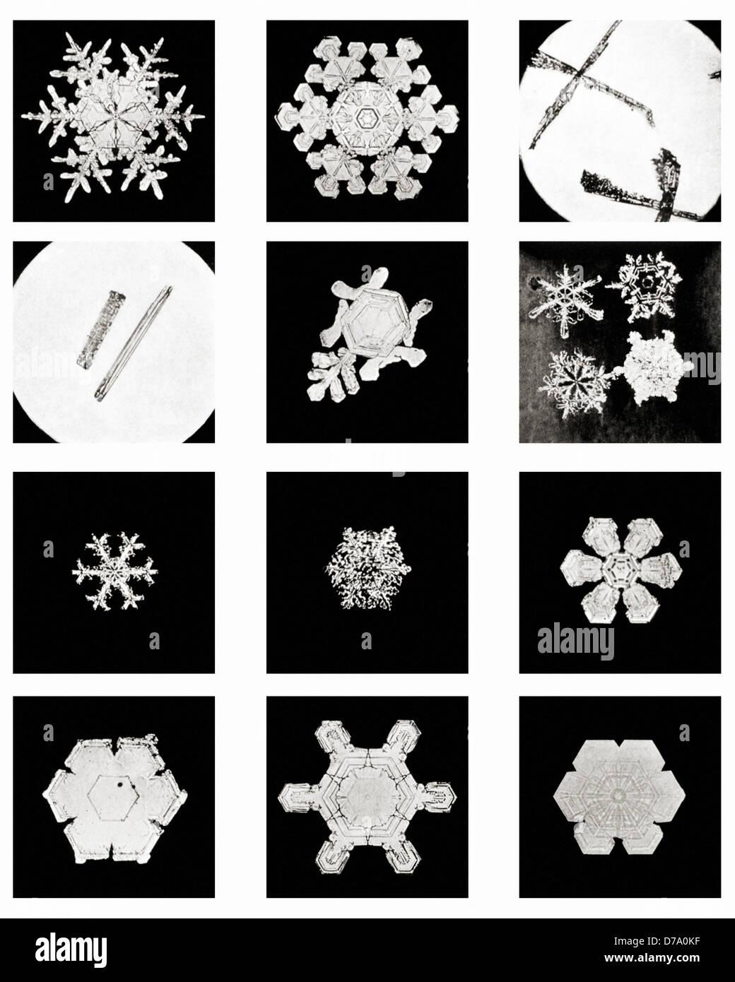 Plate IV Studies Among Snow Crystals - Stock Image