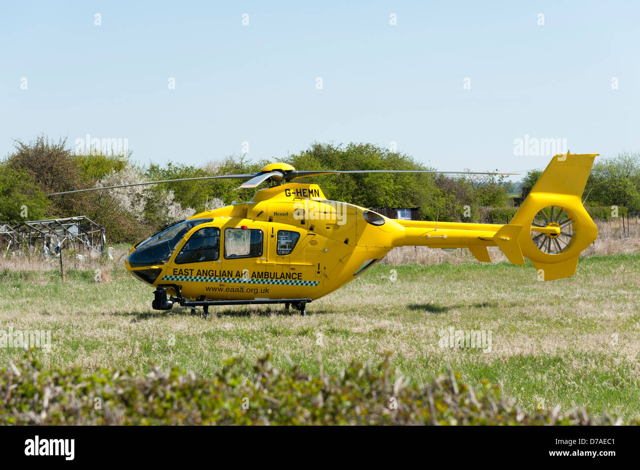 The East Anglia Air Ambulance helicopter in a field in Cambridgeshire UK - Stock Image