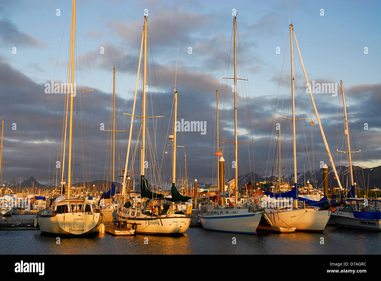 sail boats Homer spit harbor, Alaska - Stock Image