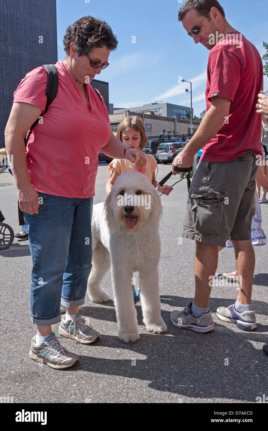 A woman pets a friendly dog at an outdoor event in Boston. - Stock Image