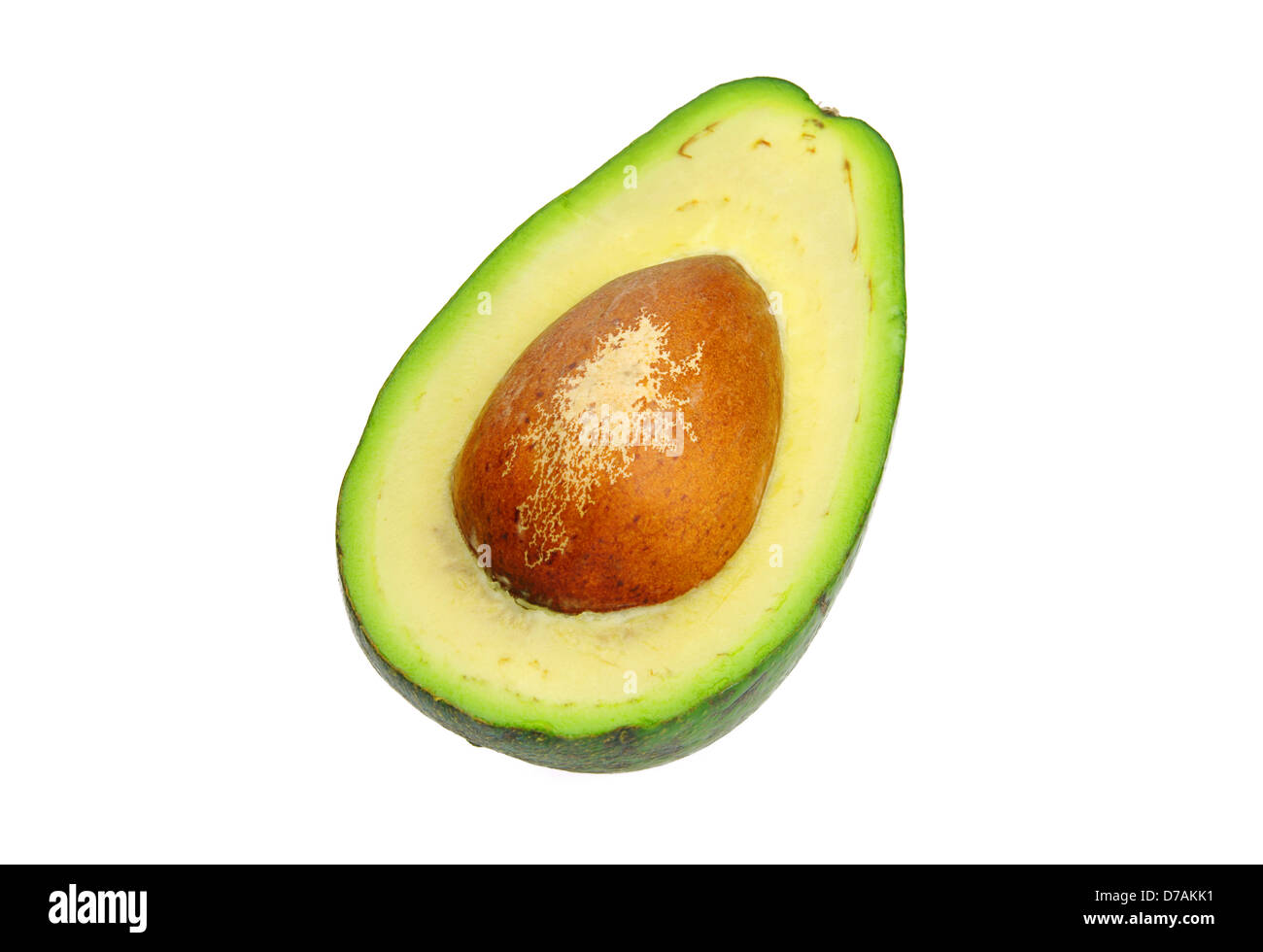 Avocado 04 - Stock Image